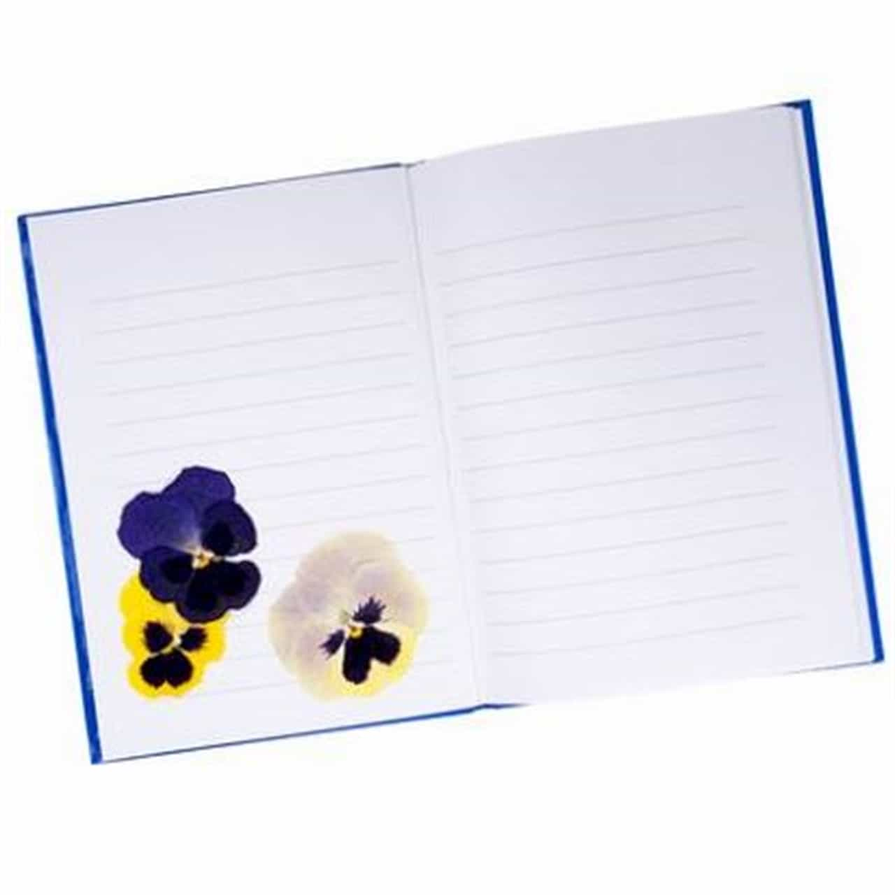 Pressed Flowers (Stationery)