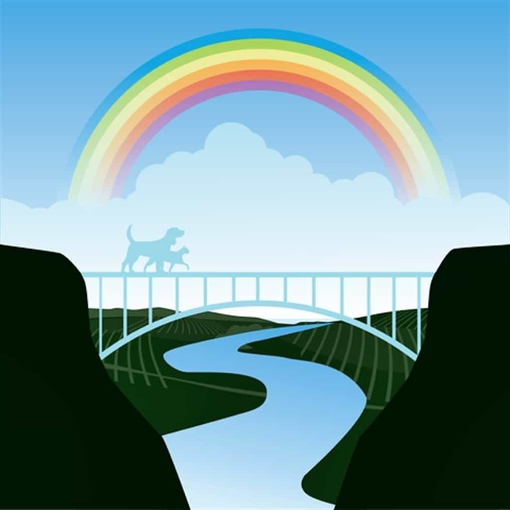 Revisiting the Rainbow Bridge