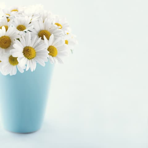 Daisy Stationery