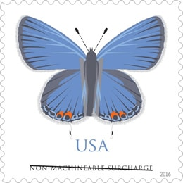 New Butterfly Square Stamp 2016