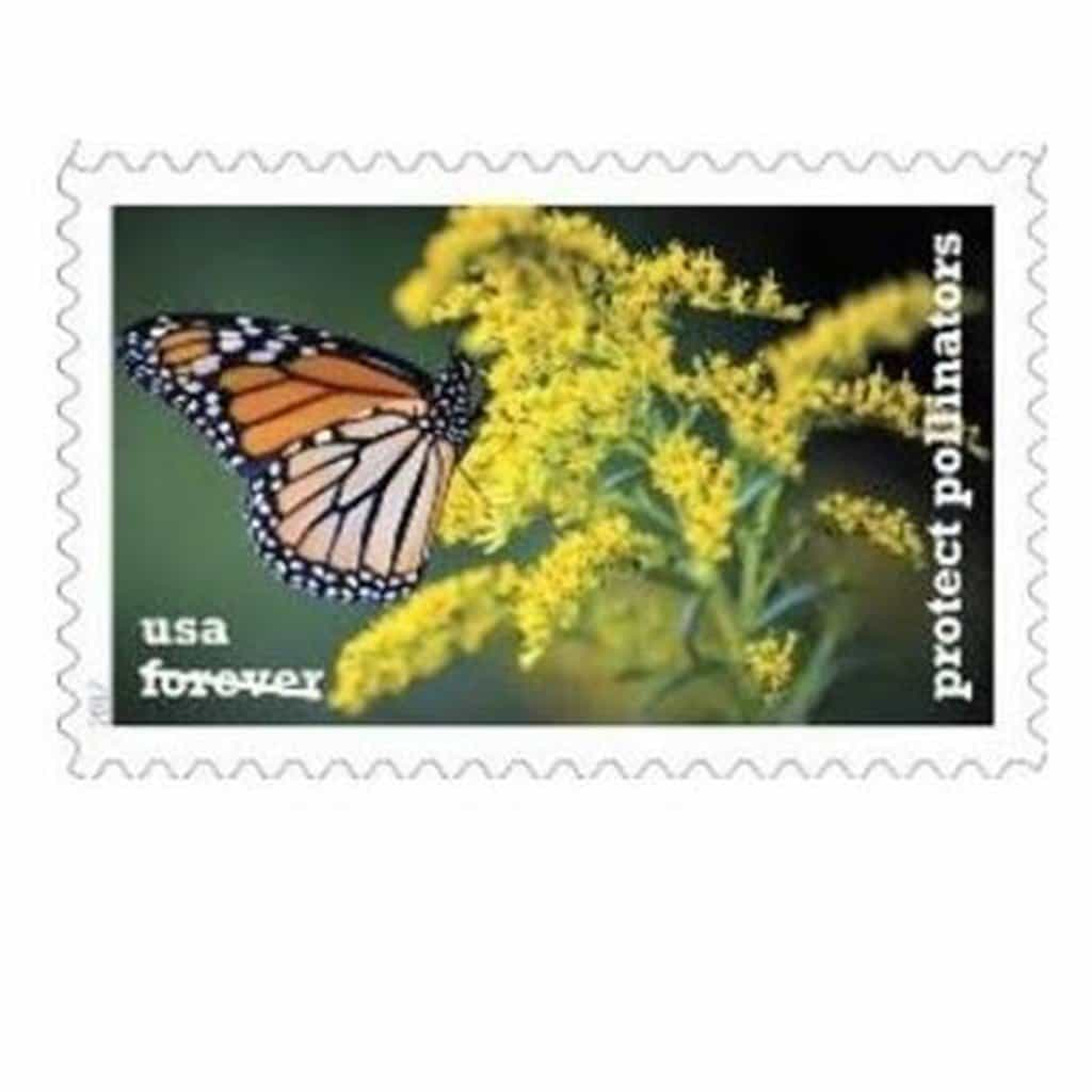 Buzzing USPS Protect Pollinators Forever Stamps