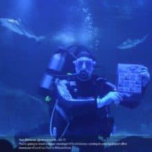 Shark Week USPS Shark Stamps Unveiling