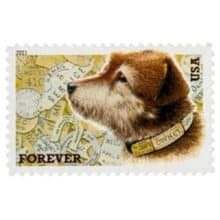 Owney Postal Dog Forever Stamp